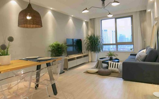 Spacious 1BR Apartment near Jing'an Temple HAO Realty Shanghai HAOLC010867