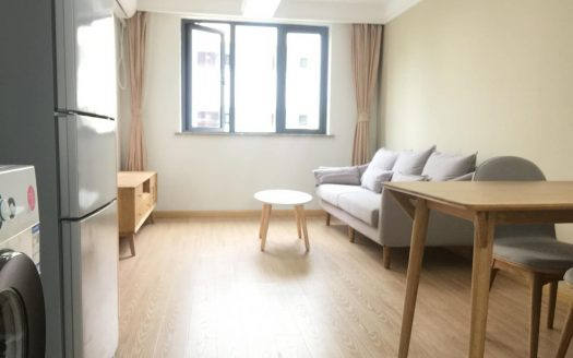 Cozy 1BR Apartment in Suzhou Creek HAO Realty Shanghai HAOAG026525