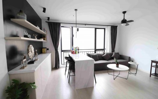 Modern Apartment in Jing'an Temple Area HAO Realty Shanghai HAOSW030607