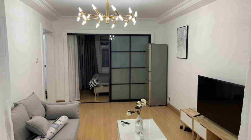 Renovated Apartment in Former French Concession HAO Realty Shanghai HAOAG030987