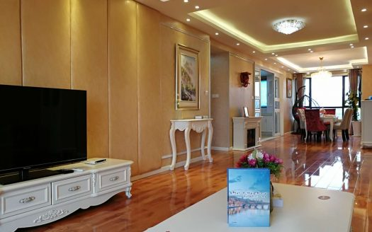 Modern Apartment in Downtown HAO Realty Shanghai HAOAG039144