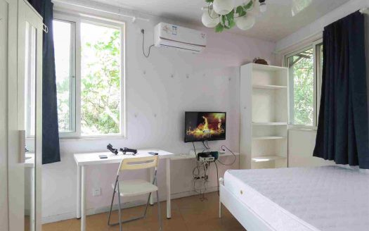 Renovated Apartment in Former French Concession HAO Realty Shanghai HAOMS042031
